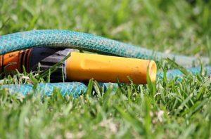 Postopek za sejanje trave